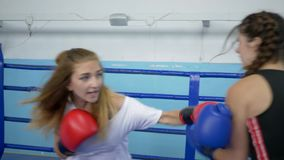 Se divierte la afición, boxeadores en el entrenamiento con guantes y luchar junto en el anillo en gimnasio almacen de metraje de vídeo