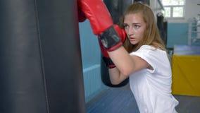 Se divierte la afición, mujer atlética en guantes de boxeo que entrena con el saco de arena en estudio de la aptitud metrajes