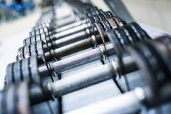 Se divierte pesas de gimnasia Fotografía de archivo libre de regalías