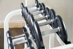 Se divierte pesas de gimnasia Foto de archivo libre de regalías