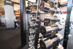 Se divierte pesas de gimnasia Pesas de gimnasia en el gimnasio fotografía de archivo