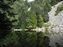 Se-exponeringsglas sjö i Vosgesna Royaltyfria Bilder