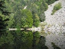 Se-exponeringsglas sjö i Vosgesna Arkivfoton