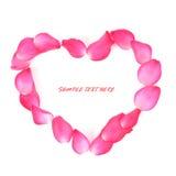Se forman los pétalos color de rosa rosados como Imagen de archivo libre de regalías