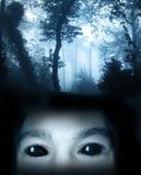 Se från mörker Arkivbilder