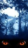 Se från mörker Arkivfoton