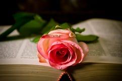 Se lee el amor Foto de archivo libre de regalías