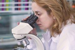 se mikroskopet Fotografering för Bildbyråer