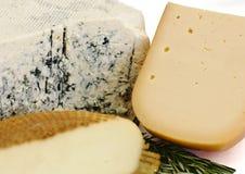 Se mina andra arbeten i portfölj Roquefort med den blåa formen, cheddar och rökt ost Arkivbild
