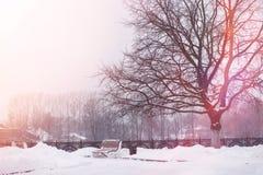 Se mina andra arbeten i portfölj Vinterpark som räknas med snow BänkFN Royaltyfria Bilder