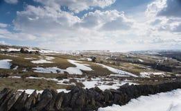 Northumberland landskap arkivbild