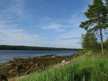 Se naturen av Karelia Arkivbilder