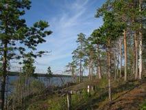 Se naturen av Karelia Royaltyfria Bilder