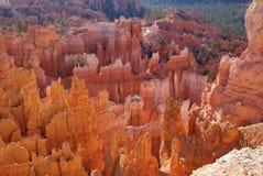 Se ner från klipporna av Bryce Fotografering för Bildbyråer