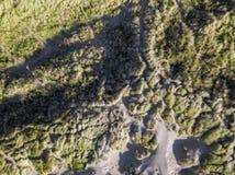 Se ner på kust- sanddyn Flyg- bild Royaltyfri Foto