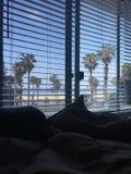 Se réveiller à la vue de la plage de Santa Monica Photos stock