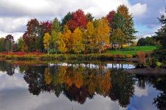 Se refléter de colora d'automne images libres de droits