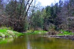 Se relaja en el río Fotografía de archivo