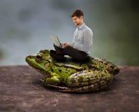 Se reposer confortable sur un crapaud et travailler sur l'ordinateur portable Images libres de droits
