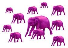 Se rosa elefanter arkivfoto