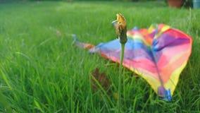 Se situer cassé par cerf-volant d'arc-en-ciel dans l'herbe Photos stock