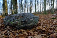 Se situer en pierre dans les bois Photographie stock