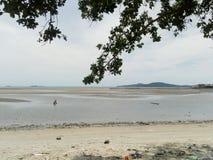 Se stranden när ett lågvatten Arkivbild