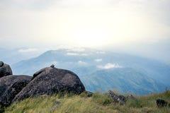 Se tenant vide sur un Mountain View au-dessus du lever de soleil brumeux et brumeux de matin, trekking de voyage photo stock