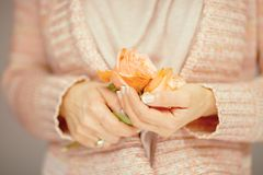 Se tenir de mains de femme a monté, des roses dans des ses mains, couleurs en pastel rose-clair Photos libres de droits