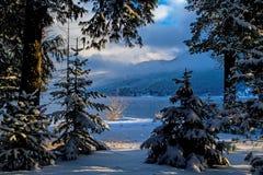Se till och med det snöig landskapet till sjön arkivbilder