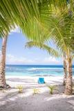 Se till och med tropiska palmträd på en vit sandstrand med a Royaltyfri Bild