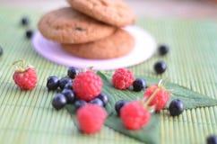 Se trouvant sur un fond vert des framboises et des myrtilles pendant la récolte, à l'arrière-plan un biscuit Photographie stock