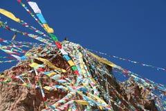 se upp på bönflaggor i Tibet royaltyfria bilder