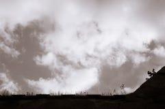 Se upp på en fortresswall med vildblommor och en dramatisk himmel arkivbilder