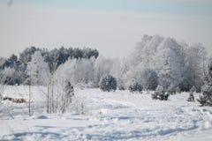 Se viene el invierno Imagenes de archivo