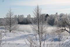 Se viene el invierno Imágenes de archivo libres de regalías