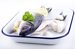 Sea ​​bass in an enamel bowl Stock Photography
