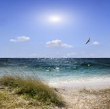 Sea beach Royalty Free Stock Images