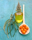 Sea ​​buckthorn oil in jar Stock Images