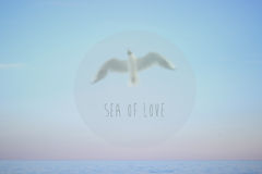 Sea of Love Royalty Free Stock Photo