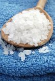 Sea ​​salt Stock Image