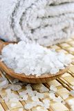 Sea ​​salt Royalty Free Stock Image