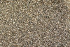 Sea sand, background. Sea sand on the beach, background, close-up Royalty Free Stock Photo