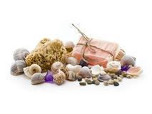 sea ​​shells, sponges and natural soap Stock Photo