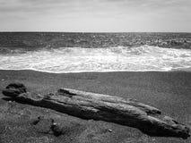 Sea shore. stock images