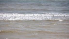 Sea wave foam froth liquid, powerful seascape coastal beauty. Sea wave foam motion liquid beauty seascape  powerful coastal stock video