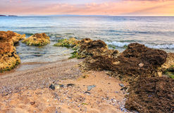 Sea waves running on sandy beach. Sea landscape with wave that craches on sandy beach with huge boulders at sunrise royalty free stock photography