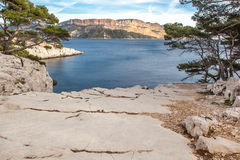 Sea ​​and pine trees in the Calanques. Near Marseille Royalty Free Stock Photography