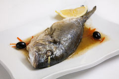 Sea ​​bream(dorada) Royalty Free Stock Photography