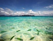 Sea Royalty Free Stock Photo
